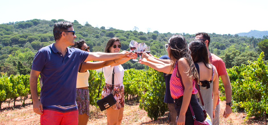 Visit our options of vineyards and enjoy a good wine tasting